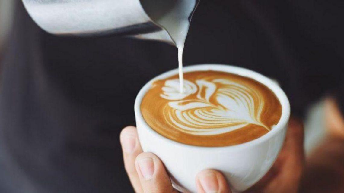 Différence entre les filtres en papier et les filtres à café permanents