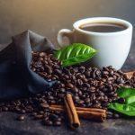 Culture du café éthiopien